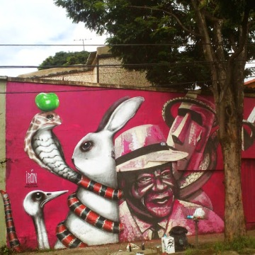 Street art in Brazil by artist Sergio Iron. Photo by SABrazil