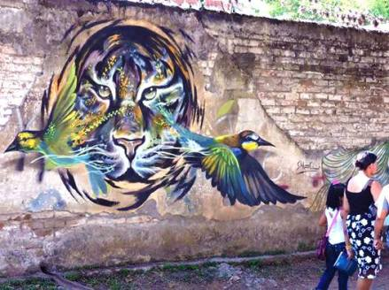#streetart in Cali, Colombia, by artist SHAGÜ