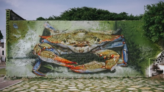 streetart-in-tampico-tamaulipas-mexico-by-artists-duotag-crew-photo-by-bokeh