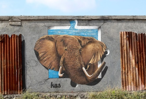 this-is-not-my-natural-habitat-streetart-in-bali-indonesia-by-artist-kas-art