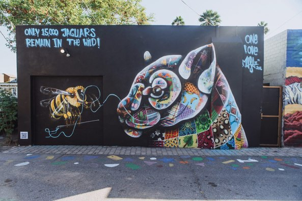 the-art-of-beeing-streetart-in-phoenix-az-usa-by-artist-louis-masai